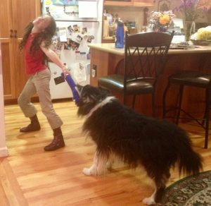 Girl plays dramatically but gently with an old border collie mix