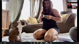 Client loving her virtual training session with her Boston Terrier puppy