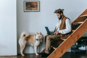 Husky dog stands near the feet of a Black man who is sitting on stairs and typing on a laptop.
