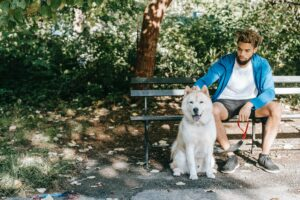 Black man sits on a park bench petting the head of a husky-type dog.